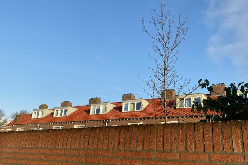 16 dakkapellen plaatsen Tilburg
